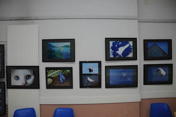 2012 expo bleu 4